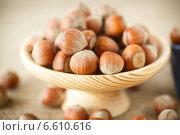 Купить «Орехи фундук», фото № 6610616, снято 31 октября 2014 г. (c) Peredniankina / Фотобанк Лори