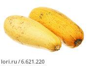 Купить «Два спелых кабачка», фото № 6621220, снято 3 ноября 2014 г. (c) Игорь Веснинов / Фотобанк Лори