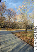 Купить «Дорожки в осеннем парке», фото № 6631896, снято 2 ноября 2014 г. (c) Александр Замараев / Фотобанк Лори