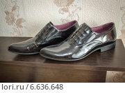 Лакированные мужские ботинки. Стоковое фото, фотограф Наталья Степченкова / Фотобанк Лори