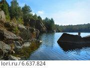 Сосновый лес на берегу озера. Стоковое фото, фотограф Екатерина Ярославовна Мостовая / Фотобанк Лори