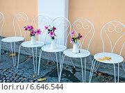Купить «Цветы в кувшинах на белых стульях», эксклюзивное фото № 6646544, снято 18 октября 2014 г. (c) Румянцева Наталия / Фотобанк Лори