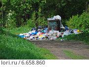 Купить «Мусор около помойки в парке «Лосиный остров» в Гольянове в Москве», эксклюзивное фото № 6658860, снято 18 мая 2010 г. (c) lana1501 / Фотобанк Лори