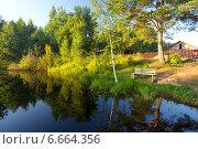 Пруд около дачного участка. Стоковое фото, фотограф Анна Кудрявцева / Фотобанк Лори