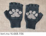 Купить «Митенки - перчатки без пальцев», эксклюзивное фото № 6668156, снято 16 марта 2012 г. (c) Dmitry29 / Фотобанк Лори
