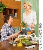 Купить «Two women brewing herbal tea», фото № 6675460, снято 20 мая 2014 г. (c) Яков Филимонов / Фотобанк Лори