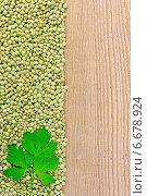 Купить «Чечевица зеленая на доске слева с петрушкой», фото № 6678924, снято 10 июня 2014 г. (c) Резеда Костылева / Фотобанк Лори