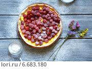 Малиновый пирог. Стоковое фото, фотограф Афанасьева Ольга / Фотобанк Лори