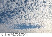 Купить «Слоисто-кучевые облака с просветом голубого неба», фото № 6705704, снято 23 октября 2014 г. (c) Ирина Водяник / Фотобанк Лори