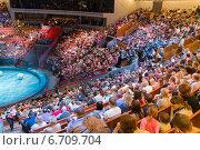 Купить «Люди в Большом московском цирке во время антракта», эксклюзивное фото № 6709704, снято 1 ноября 2014 г. (c) Володина Ольга / Фотобанк Лори