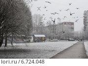 Морозное туманное утро в городе. Стоковое фото, фотограф Ляля Рюмина / Фотобанк Лори