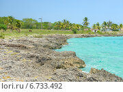 Купить «Пляж из ракушечника. Карибское море, Куба», фото № 6733492, снято 17 июня 2014 г. (c) Александр Овчинников / Фотобанк Лори