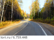 Извилистая дорога в осеннем лесу, фото № 6759448, снято 6 октября 2013 г. (c) Евгений Ткачёв / Фотобанк Лори