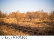 Заброшенная железная дорога. Стоковое фото, фотограф Сергей Кочевых / Фотобанк Лори