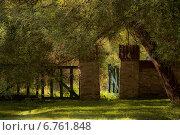 Калитка в лето. Стоковое фото, фотограф Дмитрий Ильин / Фотобанк Лори