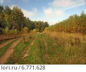 Купить «Пейзаж средней полосы», фото № 6771628, снято 14 сентября 2013 г. (c) Самойлова Екатерина / Фотобанк Лори