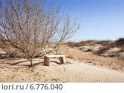 Купить «Скамейка в пустыне», фото № 6776040, снято 30 октября 2014 г. (c) Типляшина Евгения / Фотобанк Лори