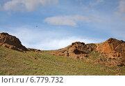 Летящая над горой Большое Богдо птица (2014 год). Редакционное фото, фотограф Дмитрий Степанов / Фотобанк Лори