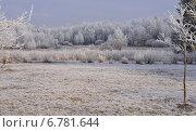 Первые заморозки. Стоковое фото, фотограф Юрий Василенко / Фотобанк Лори