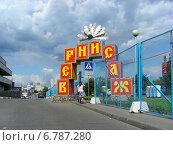 Купить «Вернисаж в Измайлово в Москве», эксклюзивное фото № 6787280, снято 23 июля 2009 г. (c) lana1501 / Фотобанк Лори
