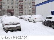 Купить «Заснеженные автомобили во дворе», фото № 6802164, снято 26 апреля 2014 г. (c) Землянникова Вероника / Фотобанк Лори