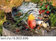 Лесной натюрморт. Стоковое фото, фотограф Мельникова Надежда / Фотобанк Лори