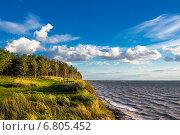 Обрывистый берег Обского Новосибирского водохранилища. Стоковое фото, фотограф Евгений Мухортов / Фотобанк Лори
