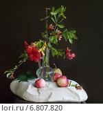 Цветы и яблоки на белом камне на черном фоне. Стоковое фото, фотограф Анна Губина / Фотобанк Лори