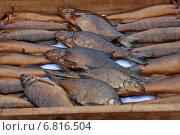 Купить «Копченая рыбка домашнего приготовления, пойманная на озере Селигер Тверской области», эксклюзивное фото № 6816504, снято 3 сентября 2011 г. (c) lana1501 / Фотобанк Лори