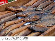 Купить «Копченая рыбка домашнего приготовления, пойманная на озере Селигер Тверской области», эксклюзивное фото № 6816508, снято 3 сентября 2011 г. (c) lana1501 / Фотобанк Лори