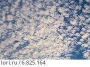 Купить «Перистые облака в синем небе», эксклюзивное фото № 6825164, снято 14 сентября 2014 г. (c) Сергей Лаврентьев / Фотобанк Лори