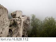 Купить «Скалы Аракульский Шихан туманным утром, Челябинская область», фото № 6828112, снято 23 августа 2014 г. (c) Александр Усик / Фотобанк Лори