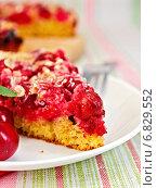 Купить «Вишневый пирог», фото № 6829552, снято 21 августа 2014 г. (c) Резеда Костылева / Фотобанк Лори
