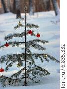 Лесная ёлочка с новогодними шариками. Стоковое фото, фотограф Ирина Черкашина / Фотобанк Лори