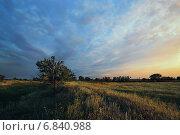 В закатном свете. Стоковое фото, фотограф Андрей Соколов / Фотобанк Лори