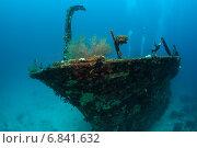 Купить «Мальдивы, остатки кораблекрушения на дне», фото № 6841632, снято 11 февраля 2013 г. (c) Сергей Дубров / Фотобанк Лори