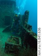 Купить «Аквалангисты обследуют затонувший корабль», фото № 6841636, снято 11 февраля 2013 г. (c) Сергей Дубров / Фотобанк Лори