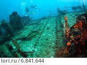 Купить «Водолазы осматривают затонувший корабль, Мальдивы», фото № 6841644, снято 11 февраля 2013 г. (c) Сергей Дубров / Фотобанк Лори