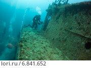 Купить «Группа аквалангистов обследует давно затонувший корабль», фото № 6841652, снято 11 февраля 2013 г. (c) Сергей Дубров / Фотобанк Лори