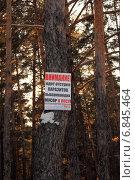 Купить «Табличка-напоминание о необходимости убирать за собой мусор в лесу», фото № 6845464, снято 28 декабря 2014 г. (c) Виталий Матонин / Фотобанк Лори