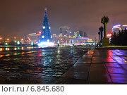 Купить «Новогодняя наряженная елка - праздничное украшение на Поклонной горе в парке Победы в Москве ночью», эксклюзивное фото № 6845680, снято 18 декабря 2014 г. (c) lana1501 / Фотобанк Лори