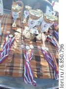 Медали и кубки победителям в гонках на выживание. Стоковое фото, фотограф Рафаэль Тутунчиев / Фотобанк Лори