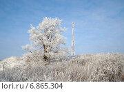 Купить «Вышка мобильной сотовой связи на фоне зимнего пейзажа», эксклюзивное фото № 6865304, снято 30 декабря 2014 г. (c) Елена Коромыслова / Фотобанк Лори