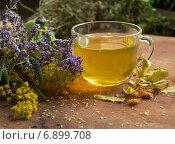 Травяной чай. Стоковое фото, фотограф Ника Денова / Фотобанк Лори