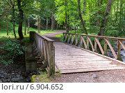 Купить «Старый мост через горную реку», фото № 6904652, снято 6 июля 2013 г. (c) Евгений Ткачёв / Фотобанк Лори