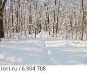 Купить «Тропинка в заснеженном лесу солнечным зимним днем», фото № 6904708, снято 26 января 2014 г. (c) Григорий Белоногов / Фотобанк Лори