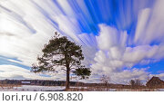 Купить «Одинокая сосна в зимнем поле, таймлапс», видеоролик № 6908820, снято 15 декабря 2014 г. (c) Никита Майков / Фотобанк Лори