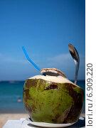 Кокос. Стоковое фото, фотограф Екатерина Рыжова / Фотобанк Лори