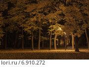 Одиночество в парке. Стоковое фото, фотограф TimoSamo / Фотобанк Лори