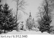 Хабаровск, зимняя прогулка по городскому парку (2014 год). Стоковое фото, фотограф Оксана Анатольевна Успенская / Фотобанк Лори
